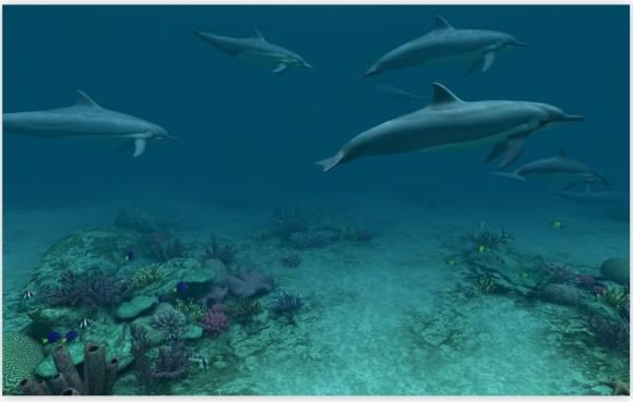 2011 12 20 02.15.08 pm 580x369 Dolphins 3D, uno sfondo animato per chi ama il mondo sommerso
