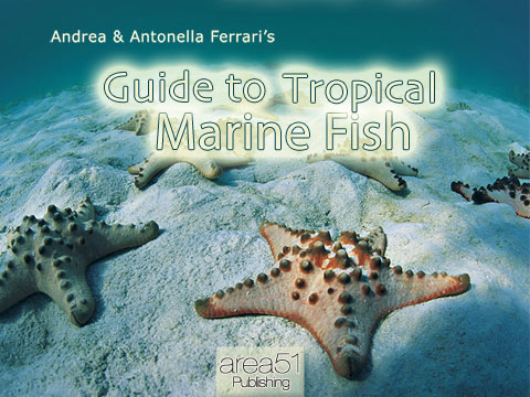 CoverTropicalComunicato Guide to Tropical Marine Fish sul tuo iPad
